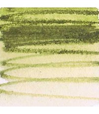 Derwent Inktense Light Olive Colored Pencil (1540)