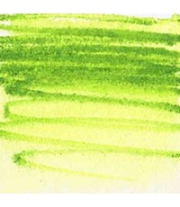 Derwent Inktense Fern Colored Pencil (1560)
