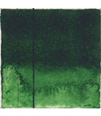 Golden QoR 11ml Watercolor Sap Green (7000400-1)